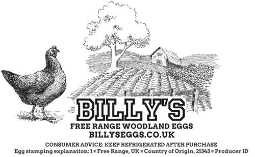 Billys-Egg-Box-design